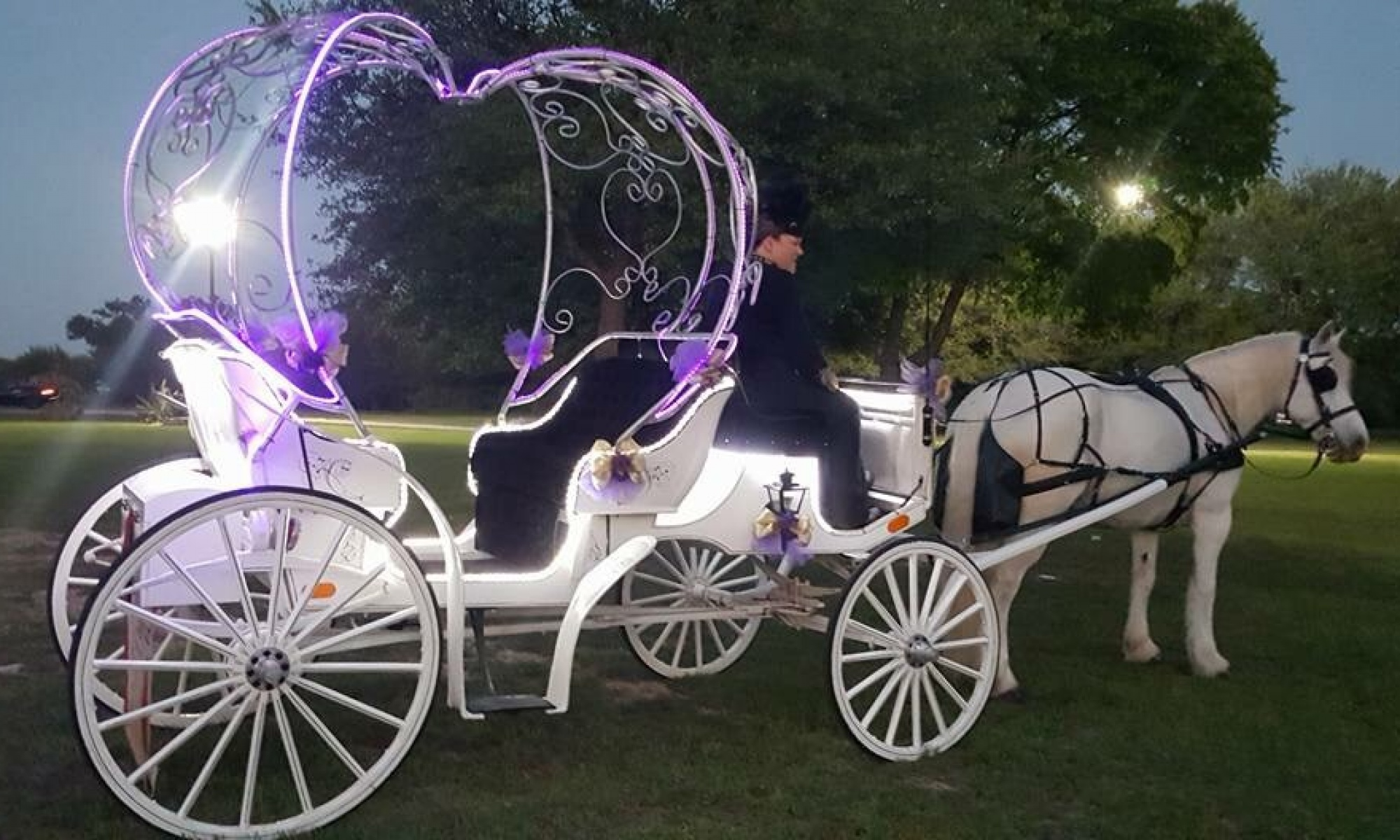 Fantasia Carriage